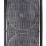 Altavoz profesional JBL JRX225