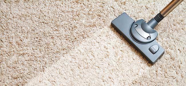 Aspiradoras para alfombras con cepillos especiales