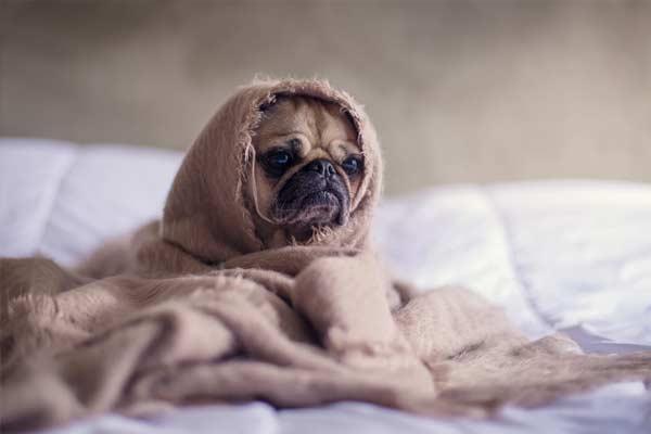como relajarse antes de dormir