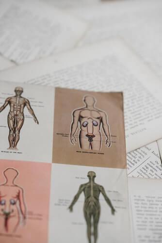 Cursos de osteopatia en madrid